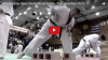 All American Open International Karate Championships 2016